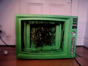 I was always wondering whats inside a TV